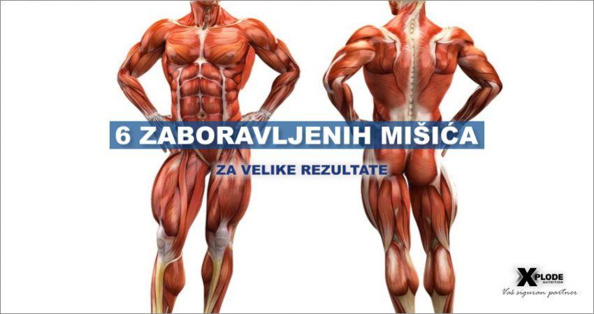 6 zaboravljenih mišića - Xplode Nutrition