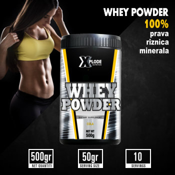 Whey Powder 500 gr